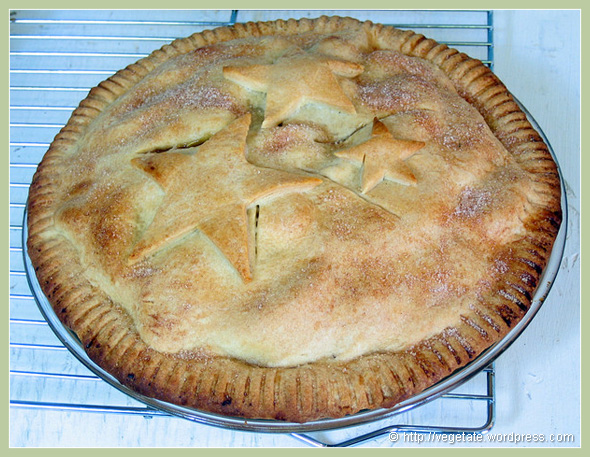 Hot Apple Pie - from Vegetate, Vegan Cooking and Food Blog