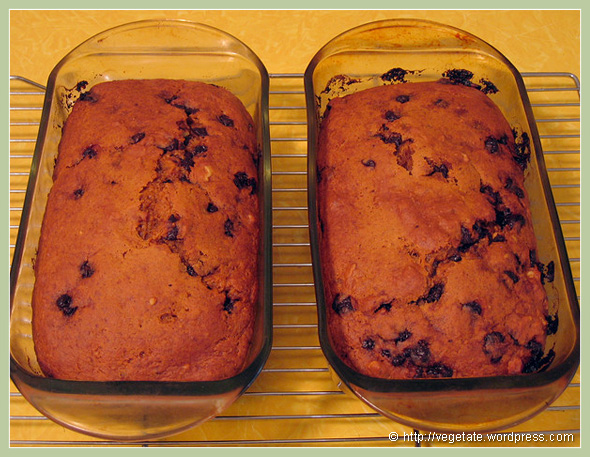 Spiced Pumpkin Bread w/Carob Chips & Walnuts - from Vegetate, Vegan Cooking and Food Blog