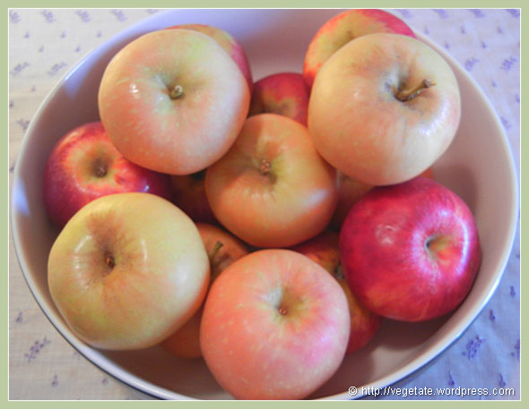 Apples: Pink Pearl & Red Gravenstein ~ From Vegetate, Vegan Cooking & Food Blog